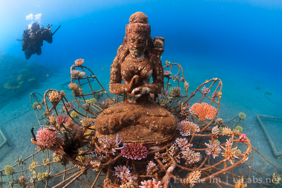 Ocean Essay #04: Bali – Trailer