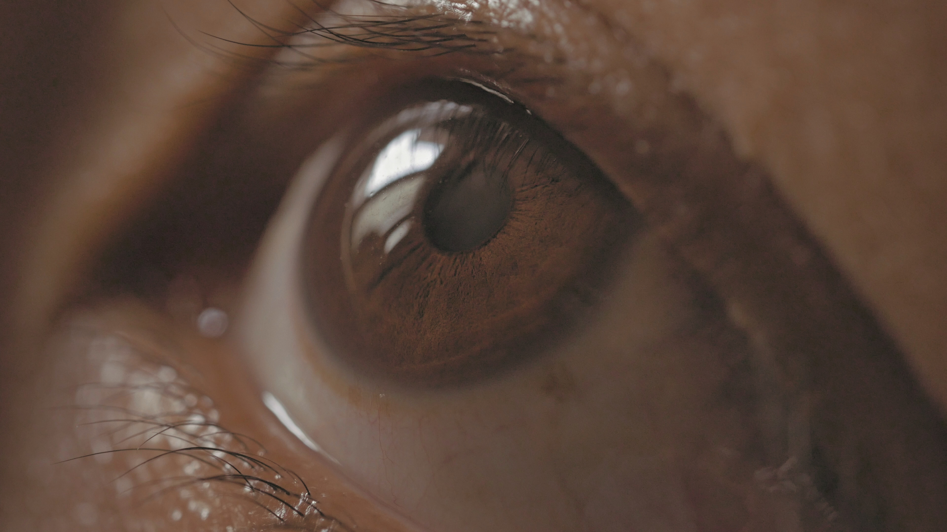 Close-up of the Human Eye – GH4 4K