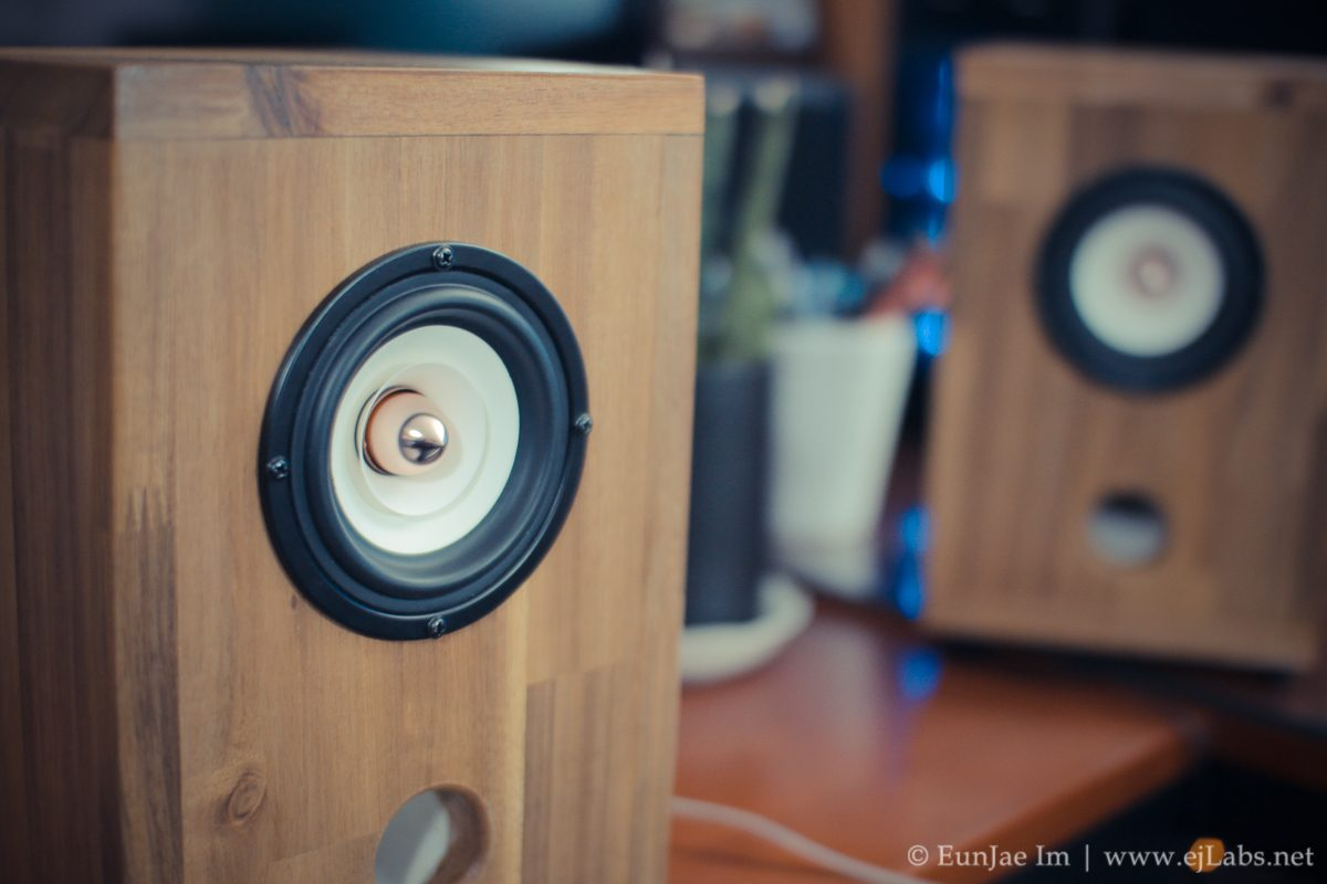 DIY Full Range Speakers