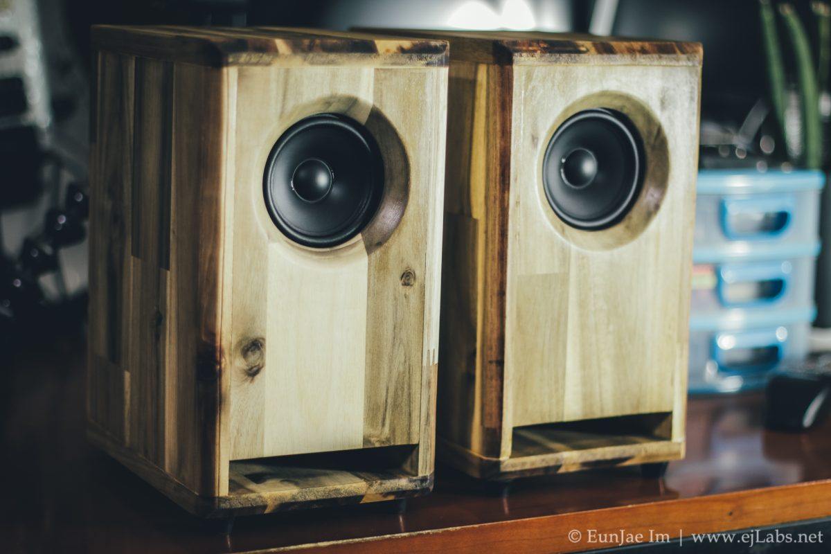 DIY Speaker Test – Tymphany TC9FD18