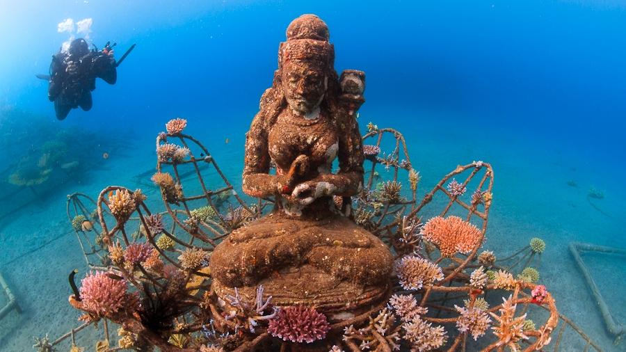 인공 산호 프로젝트 (바이오락/BioRock) – 발리, 인도네시아